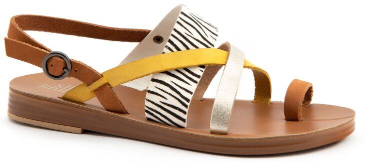 SILVER LINING GALA Zebra »
